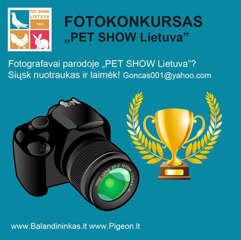 Fotokonkursas